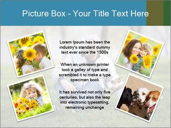 Jack russel terrier PowerPoint Template - Slide 24