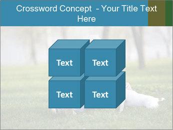 Jack russel terrier PowerPoint Template - Slide 39