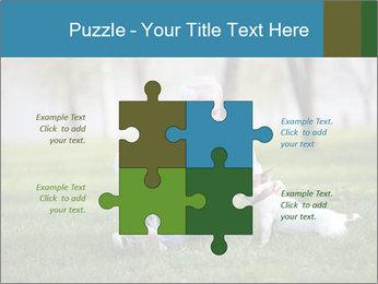 Jack russel terrier PowerPoint Template - Slide 43