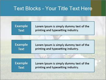 Jack russel terrier PowerPoint Template - Slide 58
