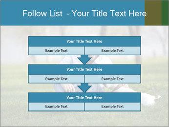 Jack russel terrier PowerPoint Template - Slide 60