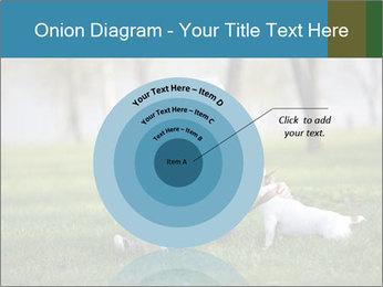 Jack russel terrier PowerPoint Template - Slide 61