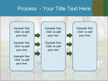 Jack russel terrier PowerPoint Template - Slide 86