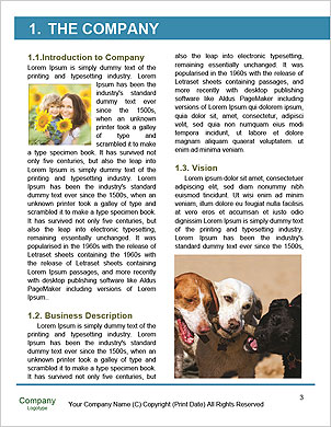 0000092245 Word Template - Page 3
