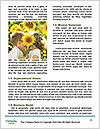 0000092245 Word Templates - Page 4