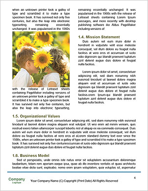 0000092245 Word Template - Page 4