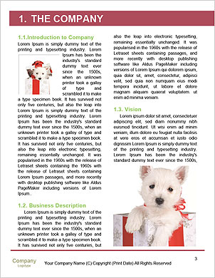 0000092251 Word Template - Page 3