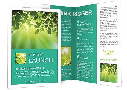 0000092268 Brochure Template