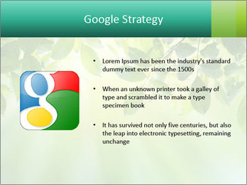 Green leaves PowerPoint Template - Slide 10