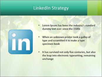 Green leaves PowerPoint Template - Slide 12