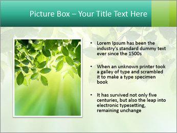 Green leaves PowerPoint Template - Slide 13