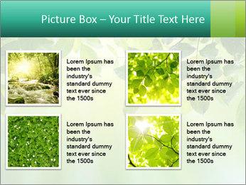 Green leaves PowerPoint Template - Slide 14