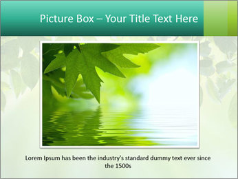 Green leaves PowerPoint Template - Slide 16