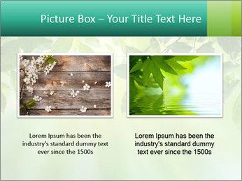 Green leaves PowerPoint Template - Slide 18