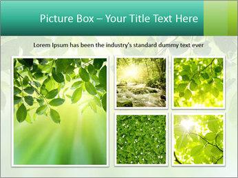 Green leaves PowerPoint Template - Slide 19