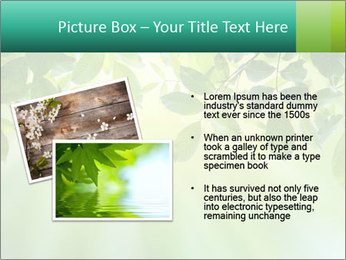 Green leaves PowerPoint Template - Slide 20