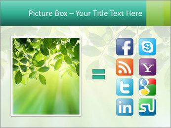 Green leaves PowerPoint Template - Slide 21