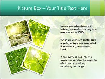 Green leaves PowerPoint Template - Slide 23