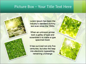 Green leaves PowerPoint Template - Slide 24