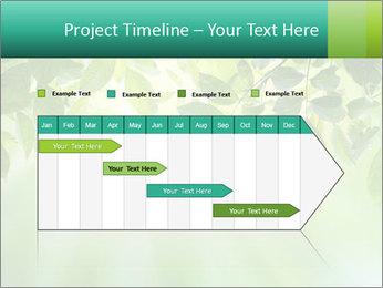 Green leaves PowerPoint Template - Slide 25