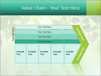Green leaves PowerPoint Template - Slide 27