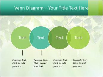 Green leaves PowerPoint Template - Slide 32