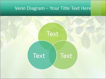 Green leaves PowerPoint Template - Slide 33