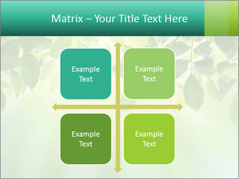 Green leaves PowerPoint Template - Slide 37