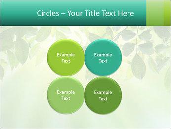 Green leaves PowerPoint Template - Slide 38