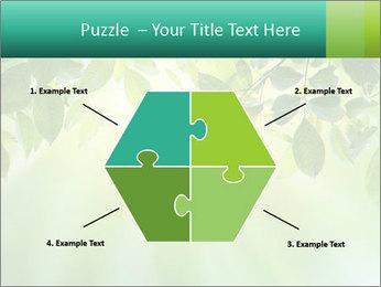 Green leaves PowerPoint Template - Slide 40
