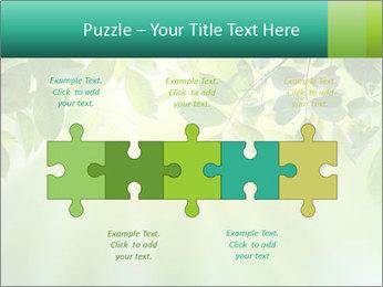 Green leaves PowerPoint Template - Slide 41