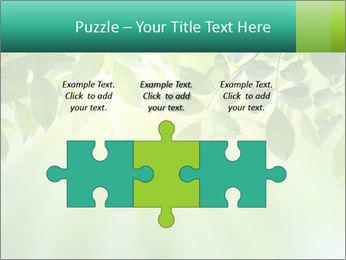 Green leaves PowerPoint Template - Slide 42