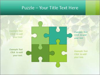 Green leaves PowerPoint Template - Slide 43