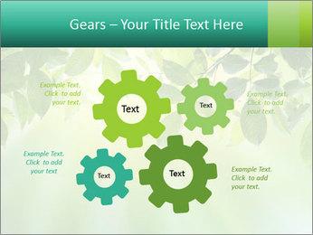 Green leaves PowerPoint Template - Slide 47