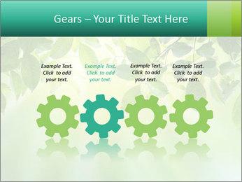 Green leaves PowerPoint Template - Slide 48