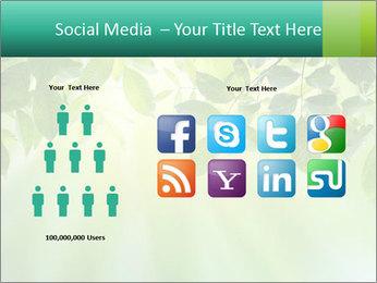 Green leaves PowerPoint Template - Slide 5