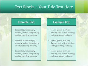 Green leaves PowerPoint Template - Slide 57