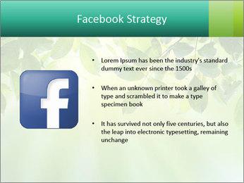 Green leaves PowerPoint Template - Slide 6