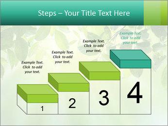 Green leaves PowerPoint Template - Slide 64