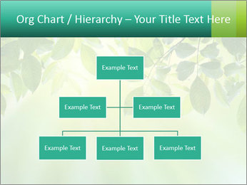 Green leaves PowerPoint Template - Slide 66