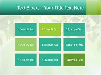 Green leaves PowerPoint Template - Slide 68