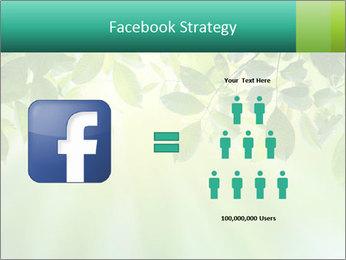 Green leaves PowerPoint Template - Slide 7