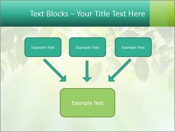 Green leaves PowerPoint Template - Slide 70