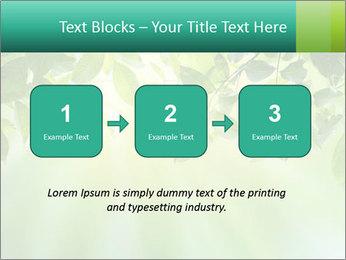 Green leaves PowerPoint Template - Slide 71