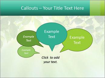 Green leaves PowerPoint Template - Slide 73