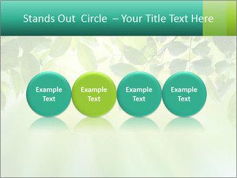 Green leaves PowerPoint Template - Slide 76