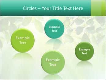 Green leaves PowerPoint Template - Slide 77