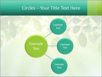 Green leaves PowerPoint Template - Slide 79