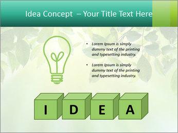 Green leaves PowerPoint Template - Slide 80