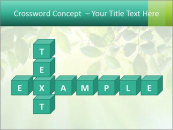 Green leaves PowerPoint Template - Slide 82